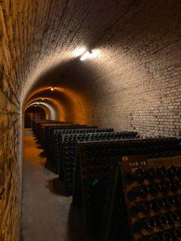 wijnkelder investeren in wijn